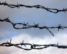 колючая проволка, ограда