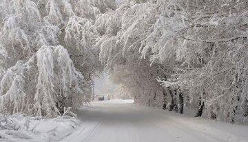 холод зима снег
