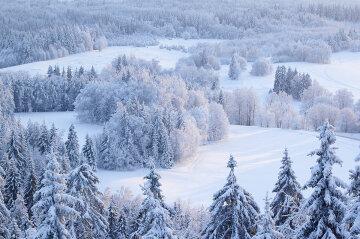 зима мороз снег