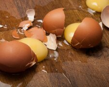 Broken eggs on the wooden floor