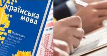 """""""С новыми тарифами, зато на украинском"""": граждан обяжут доказать знание языка, кто попадает под действие закона"""
