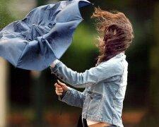 ветер, зонт, шквал, дождь