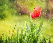 погода в Украине 6 мая