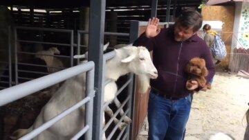 Разборки с козлом в зоопарке довели Богдана до уголовного дела: что известно