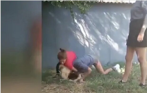 """""""Не поділили хлопця"""": під Дніпром школярки """"покарали"""" однолітку і зняли це на відео"""