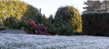 """В Киев надолго придут морозы, перед этим хорошенько """"ливанет"""": как погода будет мучать целый декабрь"""