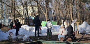 """""""Грають у сніжки і ліплять сніговиків"""": одесити здивували всю Україну, кадри підірвали мережу"""