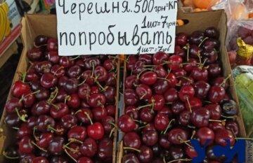 """""""7 гривен за одну ягоду"""": цены на черешню на украинских рынках взвинтили до предела"""