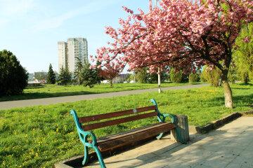 весна парк город ужгород
