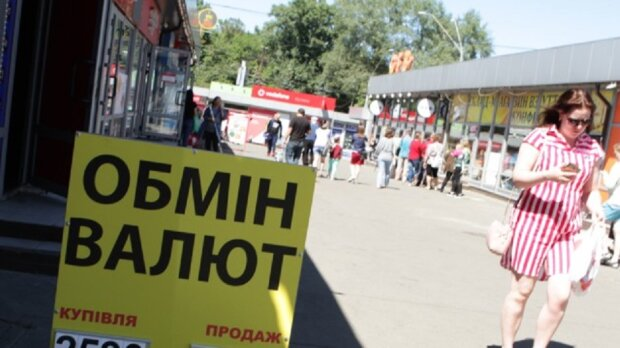 НБУ массово скупает доллар, что будет с курсом валют в Украине: «В четыре раза увеличил…»