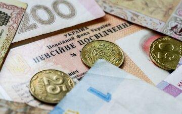Задержка выплаты пенсий: украинцам пояснили, почему в ПФ нет денег