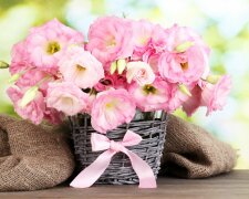 букет цветы