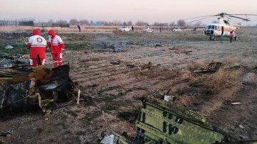 """Пассажир рухнувшего украинского """"Боинга"""" успел оставить записку: текст послания"""