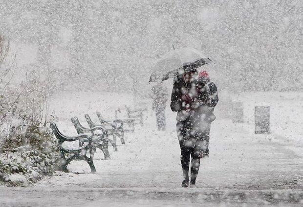 сніг, зима