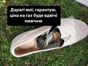 IMG_20190227_162510_506