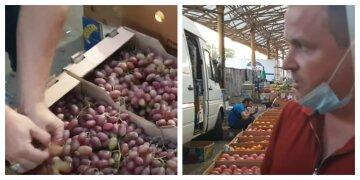 Дешевше тільки задарма: виноград в Україні віддають за безцінь, фермери б'ють на сполох