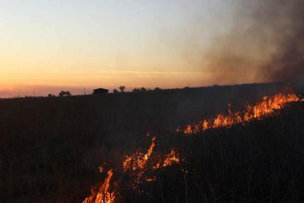 Полное уничтожение: боевики понесли болезненные потери на Донбассе, кадры последствий