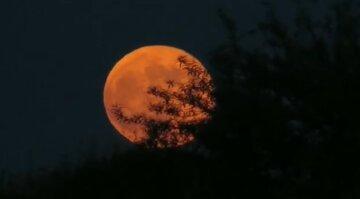 """""""Червоний"""" місяць зійшов над Одесою: оприлюднені фантастичні кадри"""