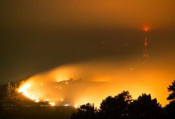 ЧП в Новой Зеландии: первые кадры масштабных пожаров (фото)