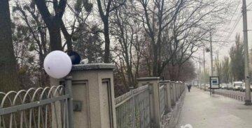 """Вандалы устроили погром на бульваре Шевченко, кадры последствий: """"Остались только два..."""""""