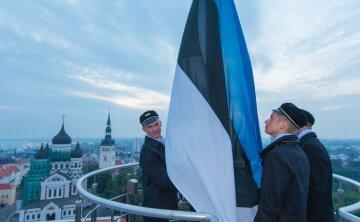 Европейская Кремниевая долина: как Эстония стала экономическим тигром Старого континента