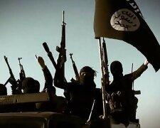 ИГИЛ, терроризм