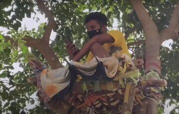 """Заболевший вирусом парень провел 11 дней на дереве: """"В больнице не было коек"""""""