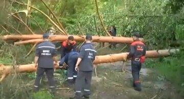 ураган, дерева, рятувальники, ДСНС, скрін
