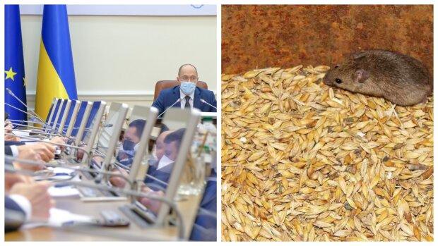 """""""Мыши проголодались"""": в Кабмине придумали, как потратить миллионы после """"исчезновения"""" зерна в Госрезерве"""