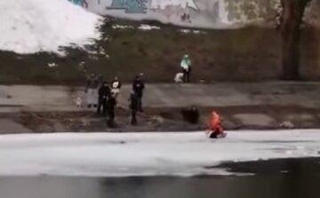 """Новое ЧП на воде в Киеве, женщина провалилась под лед: """"пыталась спасти собаку и..."""""""
