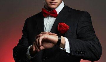 холостяк, троянда, чоловік, костюм