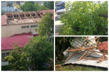 Вітер підняв у повітря дахи будинків і валив дерева: кадри негоди в Україні