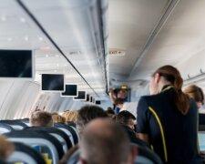 самолет, стюардесса