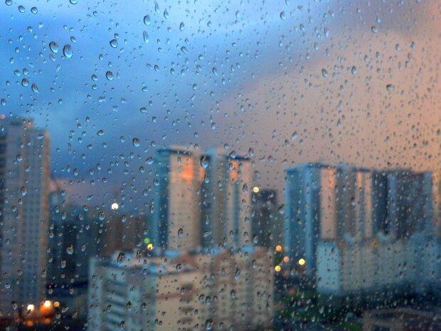погода, весна, дождь