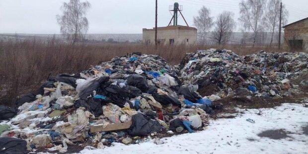Львовскому мусору нашли новый «дом»