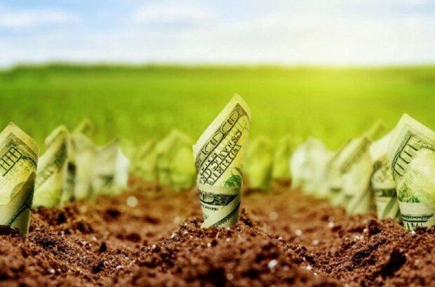 Мораторий на продажу земли в Украине