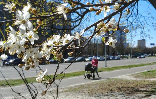погода весна прогноз погоди квітень люди