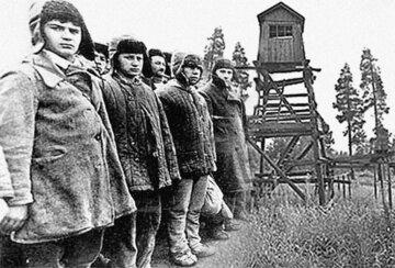 """Російський письменник назвав сталінські репресії """"прекрасними і чудовими"""", скандальне відео"""