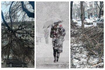 Повислі гілки, купи і бруд: як виглядає Одеса після снігової бурі, кадри