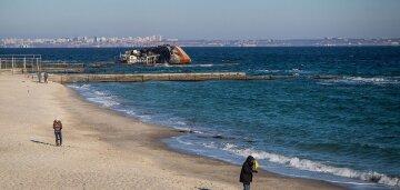 """""""Затонувший танкер и моржи"""": как выглядит одесское побережье после праздников, фото"""
