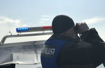полиция, поиски