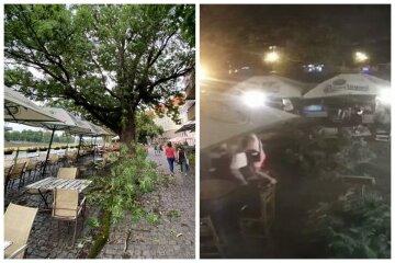 На відвідувачів кафе впала гігантська гілка, не всі змогли втекти: відео НП в Ужгороді
