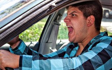 водитель, автохам