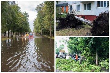 Ураган пронесся по украинскому городу, ветер снес крыши и деревья: кадры лютой стихии