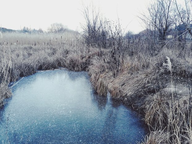 заморозки, погода, весна