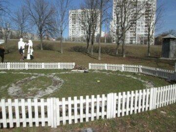 В Киеве зафиксировали нашествие паразитов: самые опасные места для прогулки