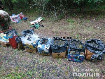 """Из Чернобыля вывозят радиоактивный """"урожай"""" сотнями кг, фото: украинцев предупредили"""