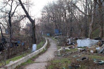"""""""Завалили мусором и вырубили деревья"""": одесситы потеряли любимое место отдыха, пугающие кадры"""
