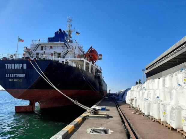 """""""Хранят как в Бейруте"""": в порту под Одессой обнаружили взрывоопасный груз, фото"""