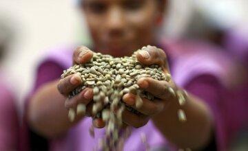 Голодные деньги:  власти украли 200 миллионов у нищих
